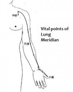 Vital points of lung meridian